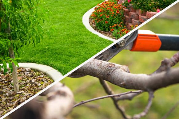 Jardineando-Servicios_3